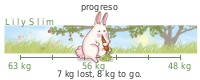 LilySlim Weight loss (bR4s)