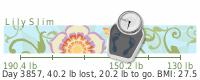LilySlim Weight loss (c0N7)